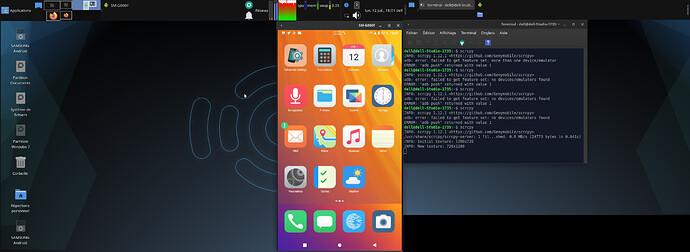 Capture d'écran_G800F_2021-07-12_18-01-35
