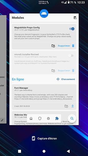 Screenshot_20210903-122336_Trebuchet