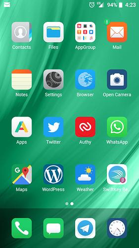 Screenshot_20190520-162336_Bliss_Launcher_(debug)