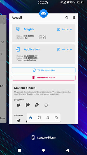 Screenshot_20210903-121114_Trebuchet
