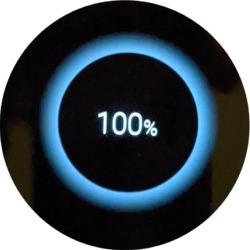 bixby100